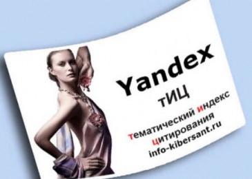 Яндекс ТИЦ сайта что это и зачем он нужен