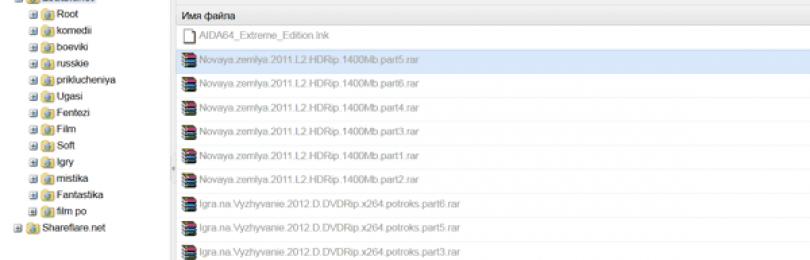 Как заработать на файлообменниках, рекомендации профессионалов!