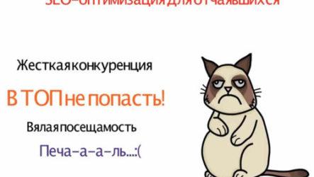 Яндекс оптимизация сайта делаем правильно