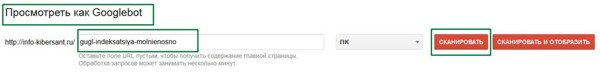 гугл индексация молниеносно