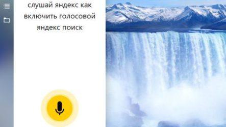 Голосовой поиск Яндекс быстро и качественно найдёт всю информацию