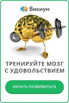 Тренеруйте мозг