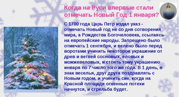петровский новый год