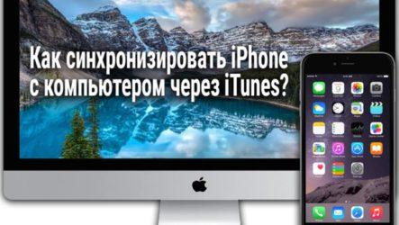 Как синхронизировать iPhone с компьютером через iTunes?