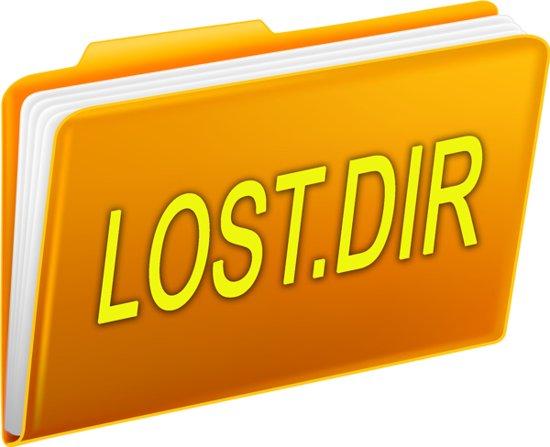 LOST DIR