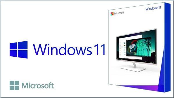 windows11-3